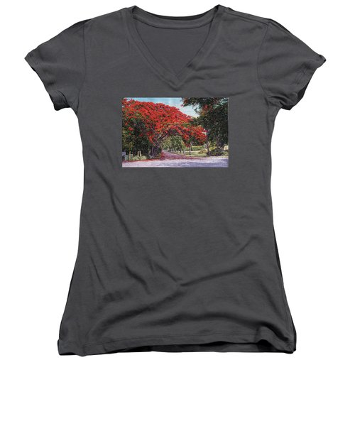 Skyline Drive Women's V-Neck