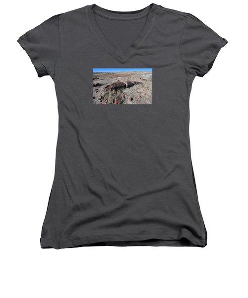 Women's V-Neck T-Shirt (Junior Cut) featuring the photograph Sliced Not Diced by Gary Kaylor