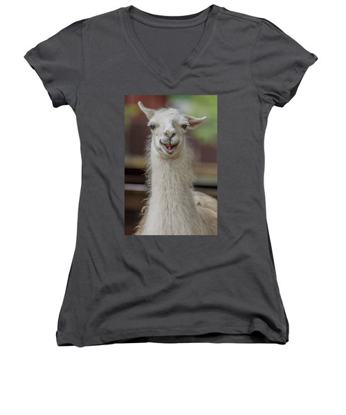 Smiling Alpaca Women's V-Neck (Athletic Fit)