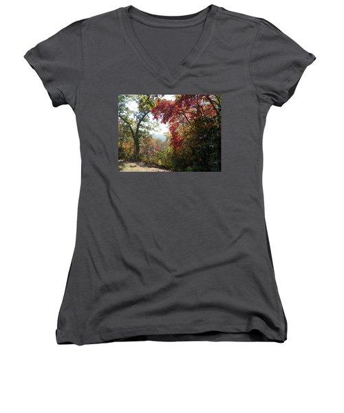 Smokies 13 Women's V-Neck T-Shirt (Junior Cut) by Val Oconnor
