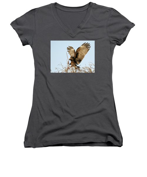 Snail Kite Coming In Women's V-Neck (Athletic Fit)