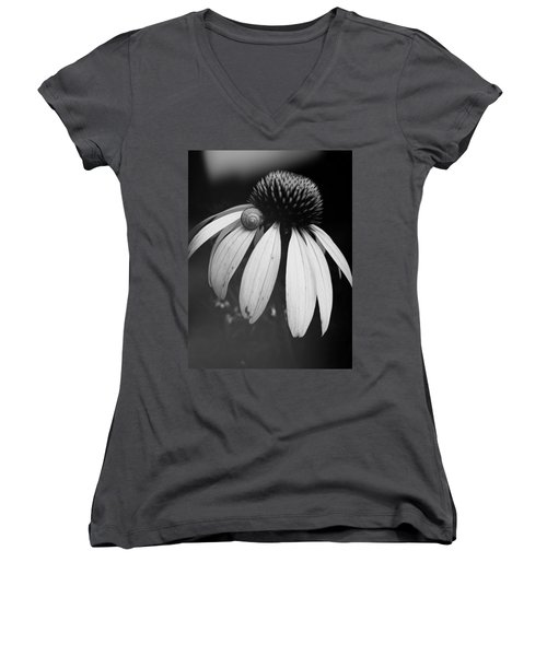 Snail Women's V-Neck T-Shirt (Junior Cut) by Sharon Jones