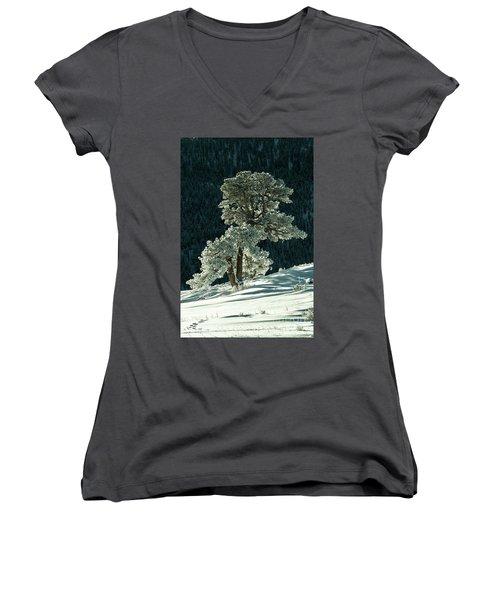 Snow Covered Tree - 9182 Women's V-Neck T-Shirt