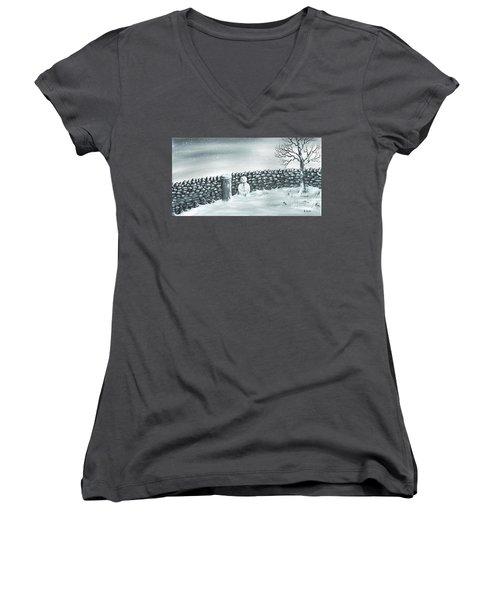 Snow Patrol Women's V-Neck T-Shirt (Junior Cut) by Kenneth Clarke