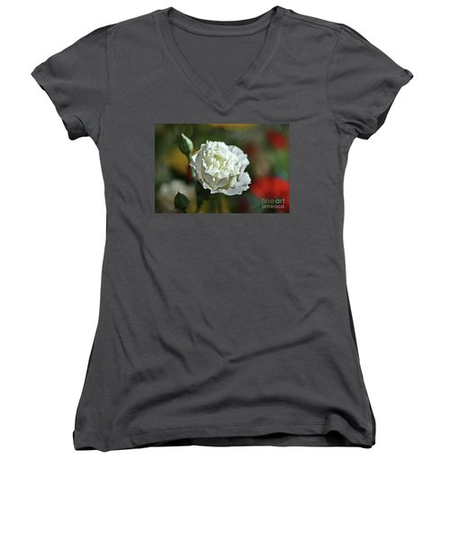 Women's V-Neck T-Shirt featuring the photograph Snow White by Stephen Mitchell