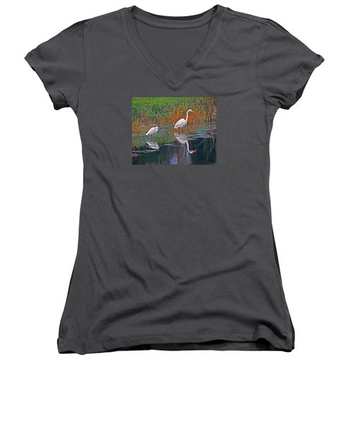 Snowy And Great Women's V-Neck T-Shirt