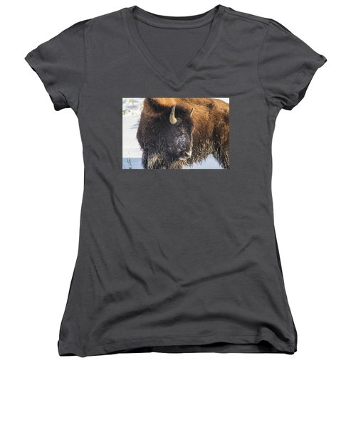 Snowy Bison Women's V-Neck (Athletic Fit)