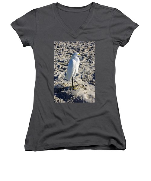 Snowy Egret At Naples, Fl Beach Women's V-Neck