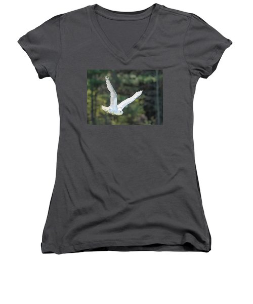 Snowy Glide Women's V-Neck (Athletic Fit)