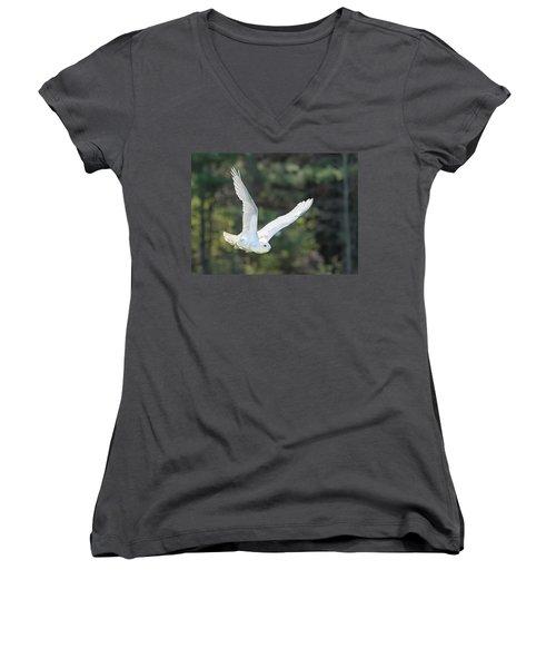 Snowy Glide Women's V-Neck T-Shirt