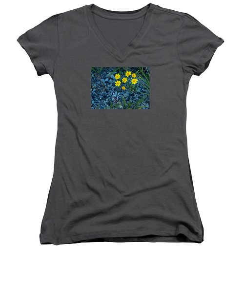 Snowy Goldeneye-#3094 Women's V-Neck T-Shirt (Junior Cut) by J L Woody Wooden
