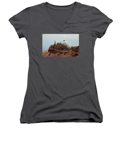 Snowy Owl In Dunes Women's V-Neck (Athletic Fit)