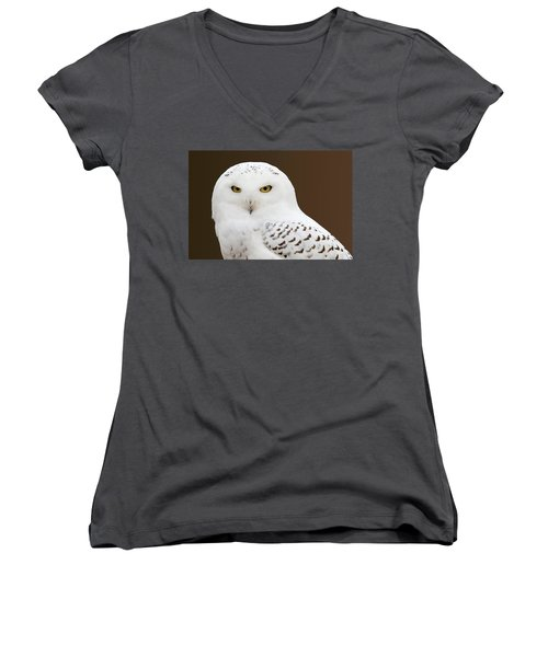 Snowy Owl Women's V-Neck T-Shirt