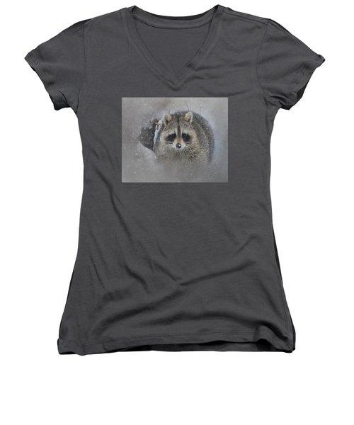 Snowy Raccoon Women's V-Neck