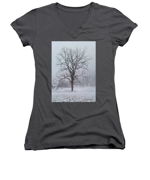 Women's V-Neck T-Shirt (Junior Cut) featuring the photograph Snowy Walnut by Denise Romano