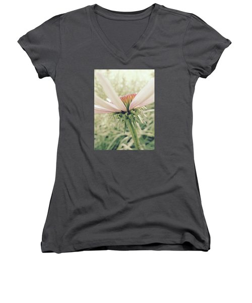 Soft Colors Women's V-Neck T-Shirt (Junior Cut) by Tim Good
