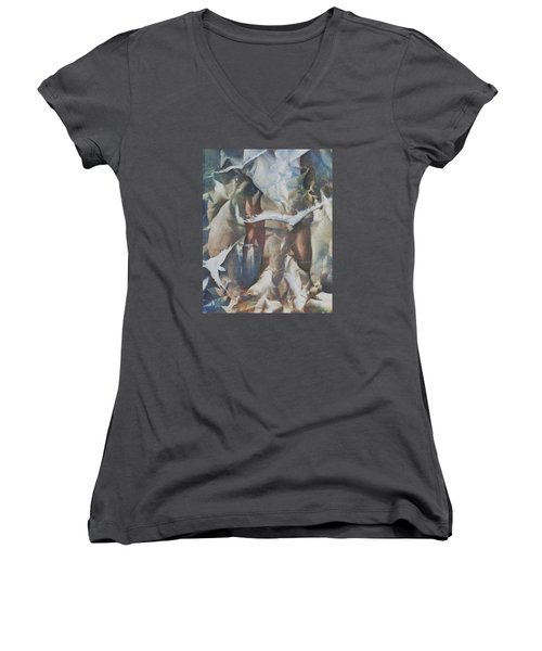 Soft Flight Women's V-Neck T-Shirt