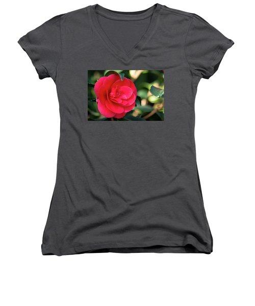 Soft Kiss Women's V-Neck T-Shirt