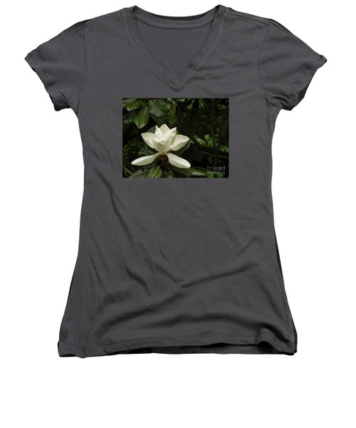 Softly Dreaming Women's V-Neck (Athletic Fit)