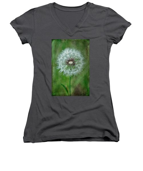 Women's V-Neck T-Shirt (Junior Cut) featuring the photograph Softly Sitting by Jan Amiss Photography