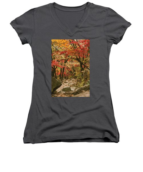 Solitary Women's V-Neck T-Shirt (Junior Cut) by Hyuntae Kim