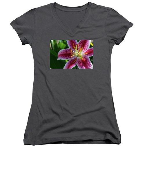Solitary Splendor Women's V-Neck T-Shirt