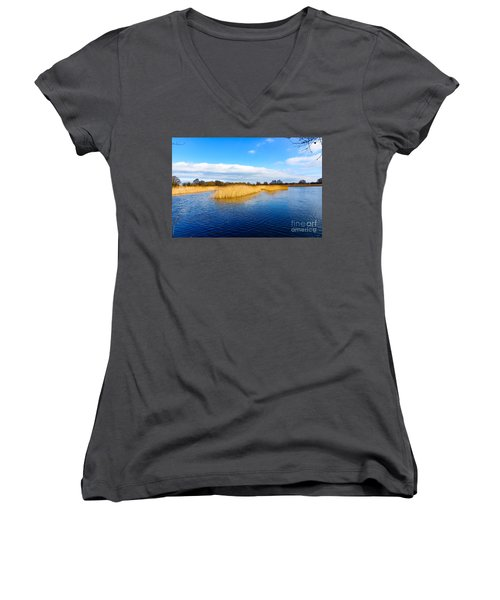 Somerset Levels Women's V-Neck T-Shirt (Junior Cut) by Colin Rayner