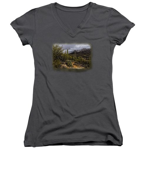 Sonoran Winter No.3 Women's V-Neck T-Shirt