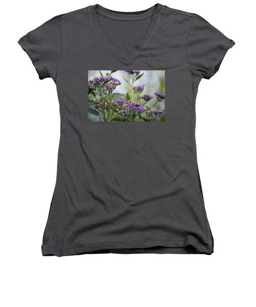 Sophies Garden Women's V-Neck T-Shirt