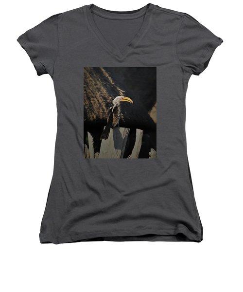Women's V-Neck T-Shirt (Junior Cut) featuring the digital art Southern Yellow Billed Hornbill by Ernie Echols