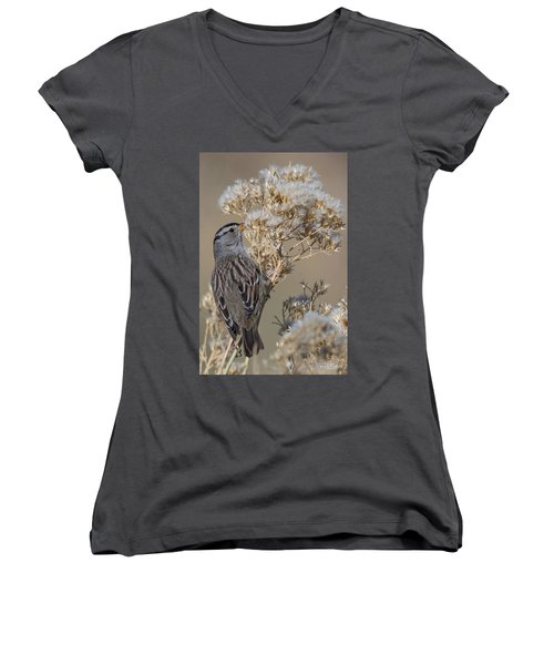 Sparrow Women's V-Neck (Athletic Fit)