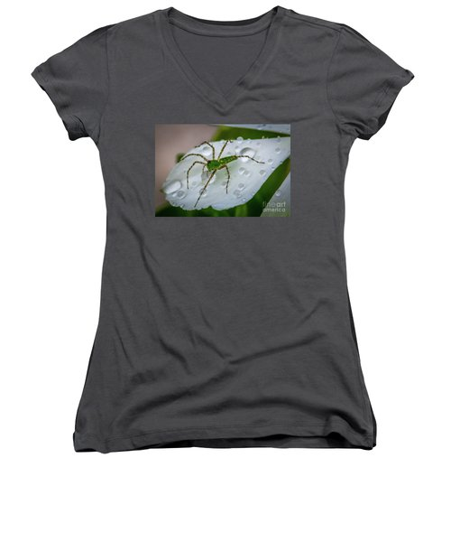 Spider And Flower Petal Women's V-Neck T-Shirt (Junior Cut) by Tom Claud