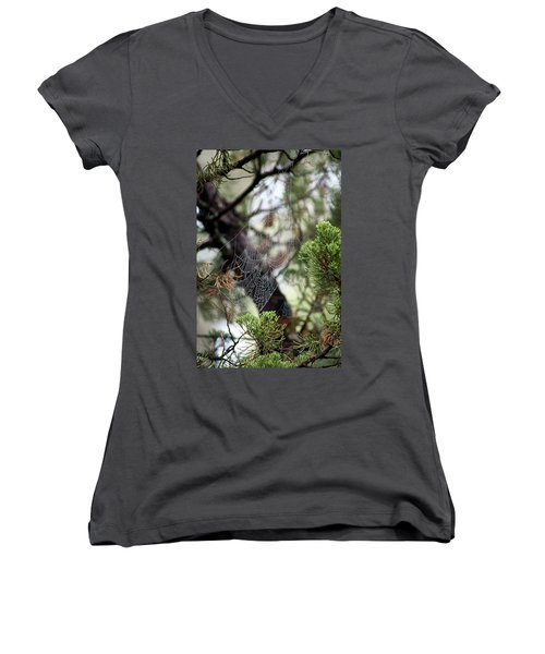 Spider Web In Tree Women's V-Neck (Athletic Fit)