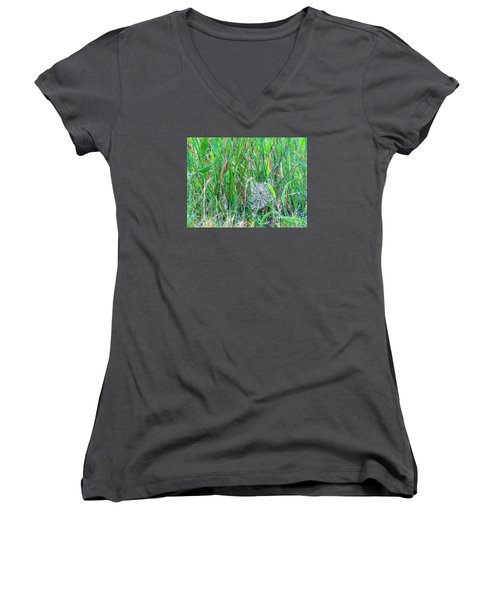 Spider Web Women's V-Neck T-Shirt (Junior Cut) by Kay Gilley