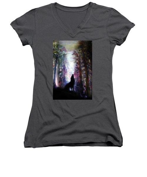 Spirit Guide Women's V-Neck T-Shirt