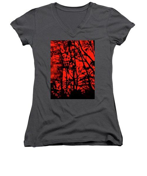 Spirit Of The Mist Women's V-Neck T-Shirt