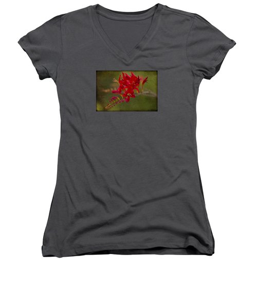Splash Of Red. Women's V-Neck T-Shirt (Junior Cut) by Clare Bambers