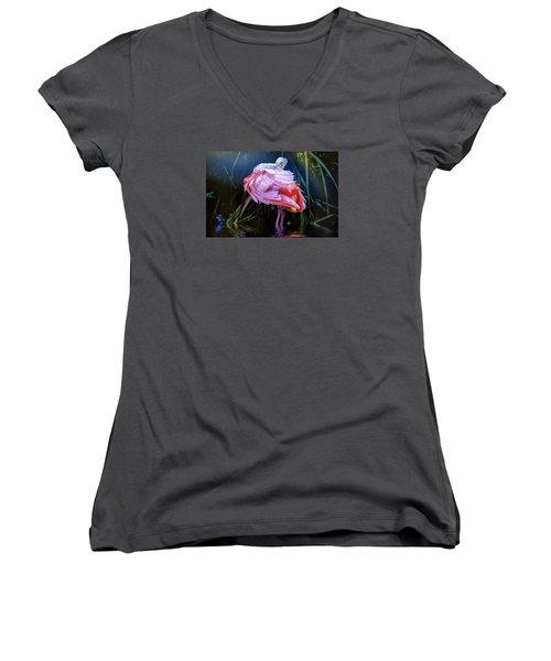 Women's V-Neck T-Shirt (Junior Cut) featuring the photograph Spoonbill Fandance by Brian Tarr