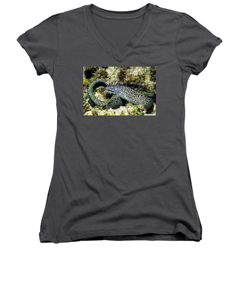 Spotted Moray Eel Women's V-Neck (Athletic Fit)