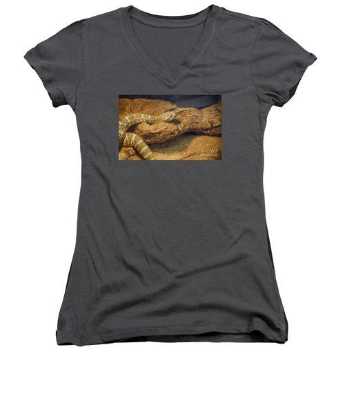 Spotted Rattlesnake   Blue Phase Women's V-Neck T-Shirt (Junior Cut) by Anne Rodkin
