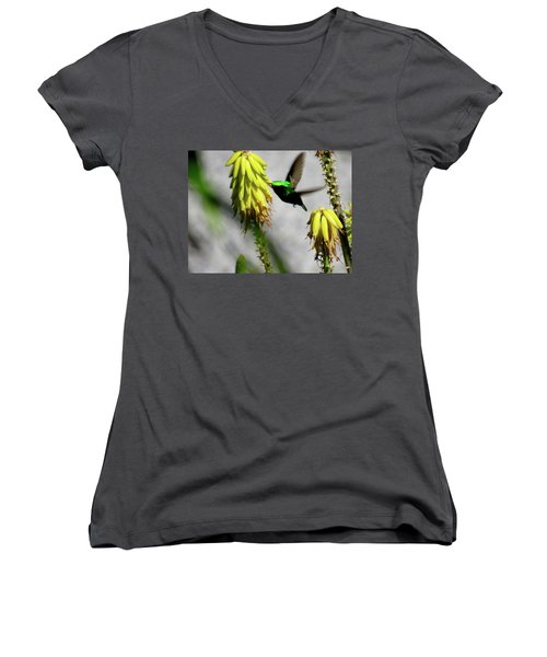 Spread Your Wings Women's V-Neck (Athletic Fit)