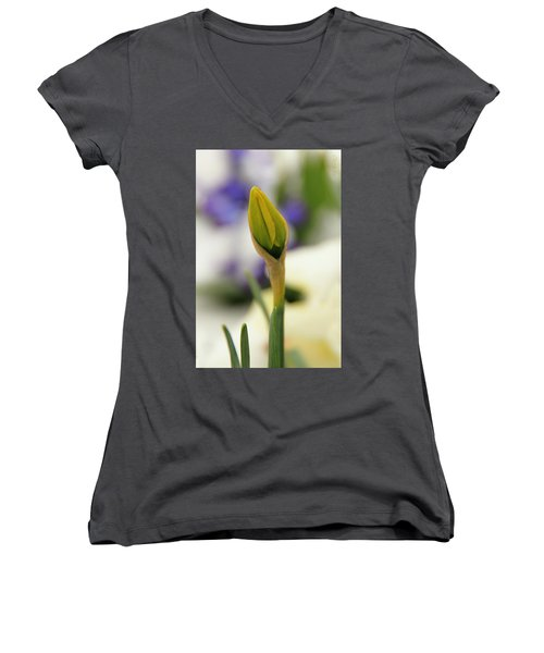 Women's V-Neck T-Shirt (Junior Cut) featuring the photograph Spring Blooms In The Snow by Chris Berry