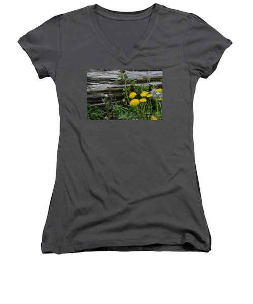 Spring Bouquet Women's V-Neck T-Shirt (Junior Cut) by Renie Rutten