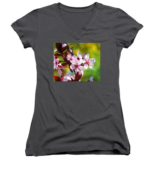 Spring Cheer Women's V-Neck (Athletic Fit)