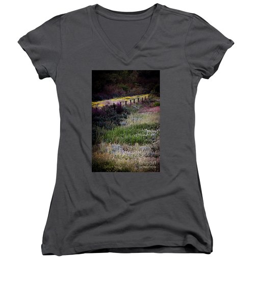 Spring Colors Women's V-Neck T-Shirt (Junior Cut) by Kelly Wade