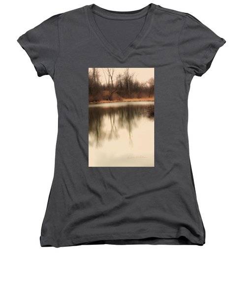 Spring Coming Women's V-Neck T-Shirt (Junior Cut) by Edward Peterson
