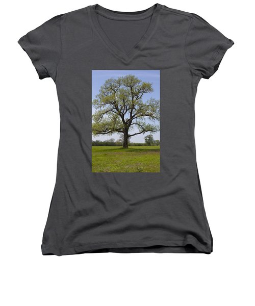 Spring Emerges Women's V-Neck T-Shirt