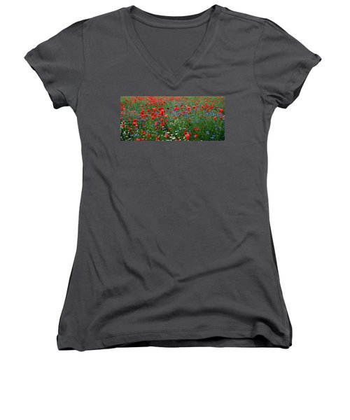 Spring Flowers Women's V-Neck T-Shirt (Junior Cut) by Ellen Heaverlo