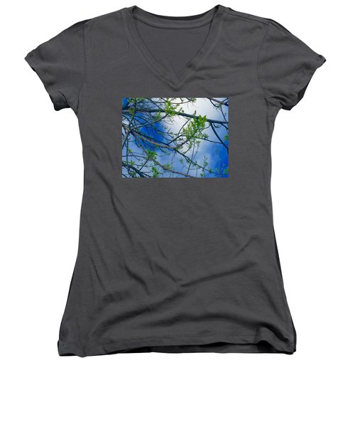 Spring Is In The Air Women's V-Neck T-Shirt