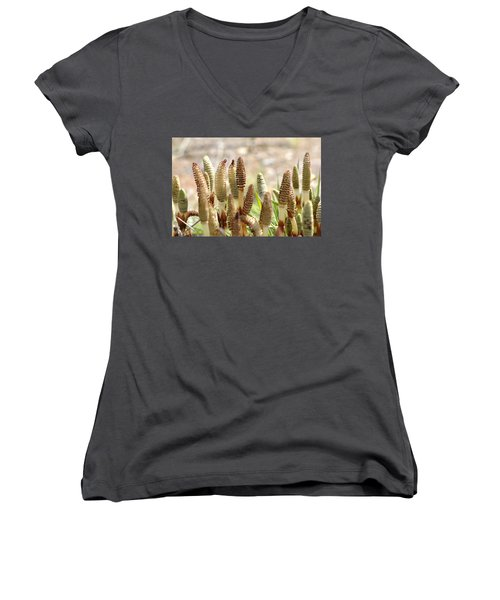 Women's V-Neck T-Shirt (Junior Cut) featuring the photograph Spring Macro4 by Jeff Burgess